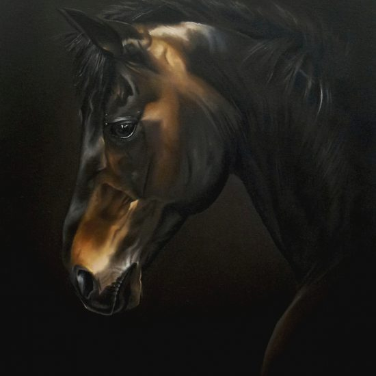 Black Beauty by Amy Charlesworth at the Harrison Lord Gallery